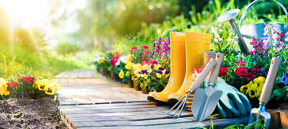 Garden with flowers and yellow boots